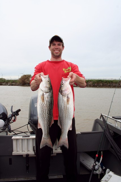 Prospecting Time For Spring Stripers