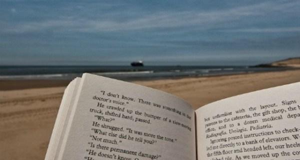 beach bag books