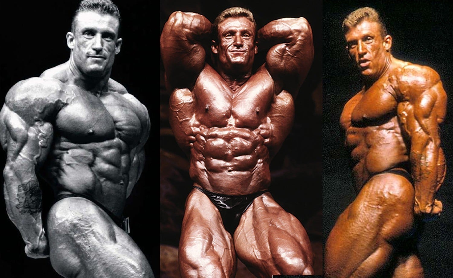 Bodybuilder Wallpaper With Quotes Dorian Yates 10 Golden Rules For Building Muscle