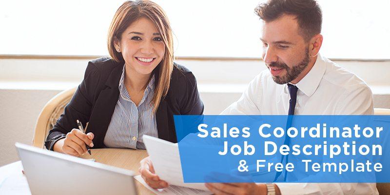 Sales Coordinator Job Description  Free Template