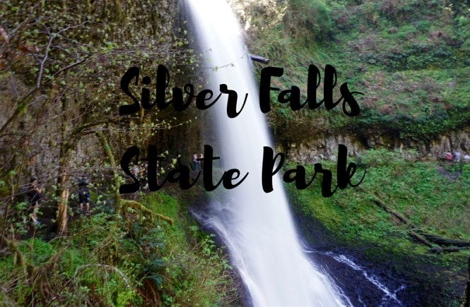 silver falls preview-3