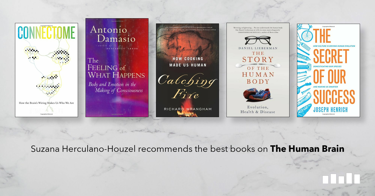 The Best Books On The Human Brain Five Books Expert Recommendations