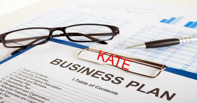 Write business plan and marketing plan by Robert_kate