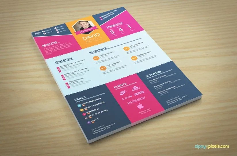 Write resume, curriculum vitae and cover letter by Shahkar237