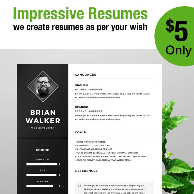 Create some cool looking resumes by Sanueg