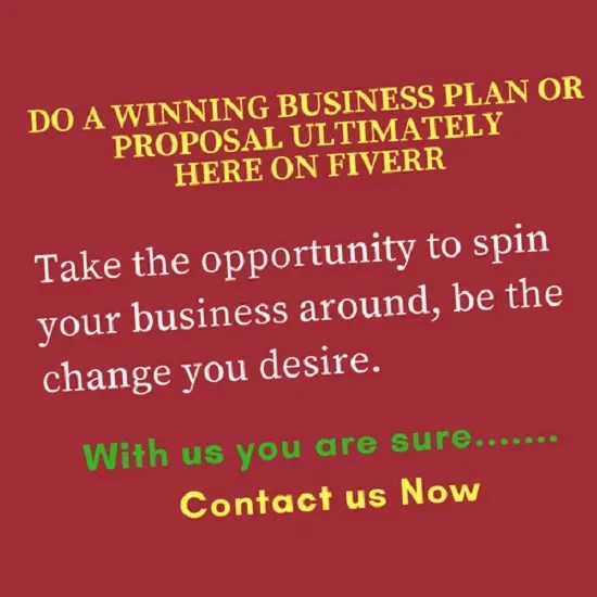 Write a professional business plan or proposal for you by Bizconsult7248