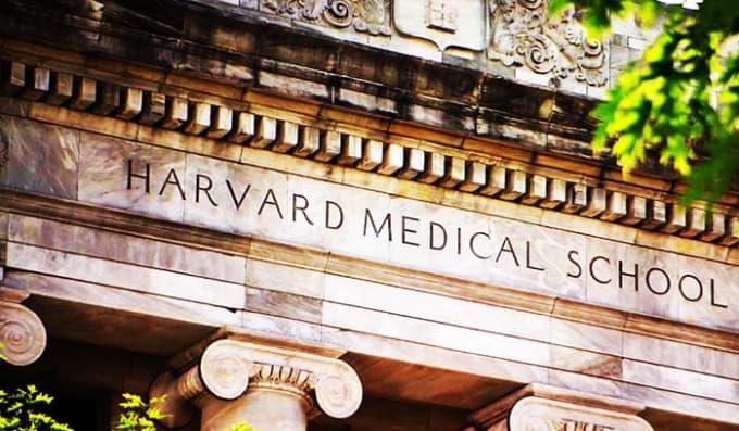 Medical School Application Advice Fiverr