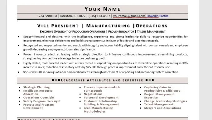 write Director, VP, C Level Executive Resume