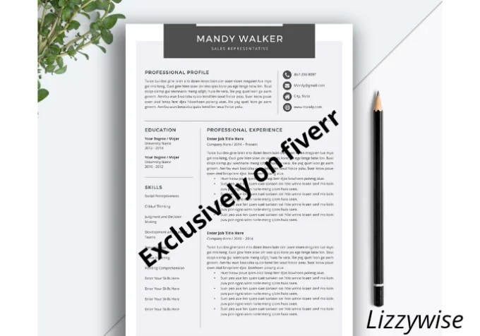 Professionally write, edit and design a killer resume by Lizzywise