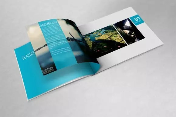 Create a professional product catalog or booklet by Alishbaman