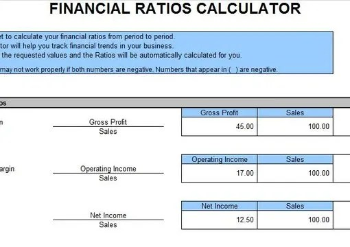 Give you the financial ratio calculator excel template by Richardandrews