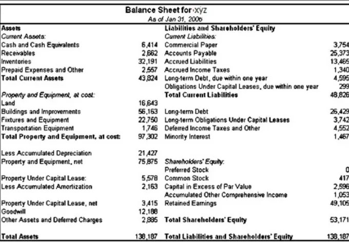 Prepare a detailed balance sheet for your company, business