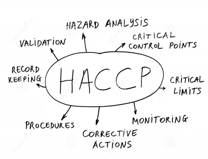 develop HACCP Plan and Food Safety procedures