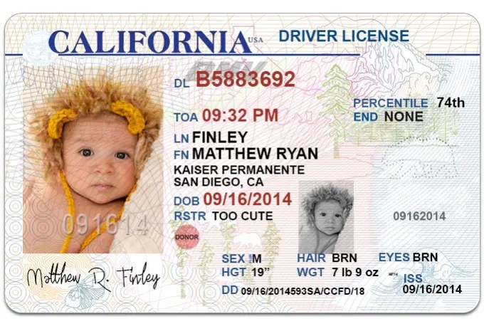 Send 1 California Drivers License Photoshop Template By