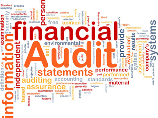 Financial statements review College paper Writing Service