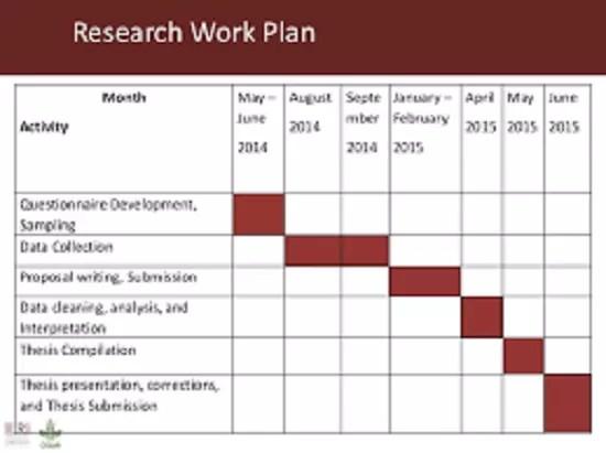 Sample Work Plans