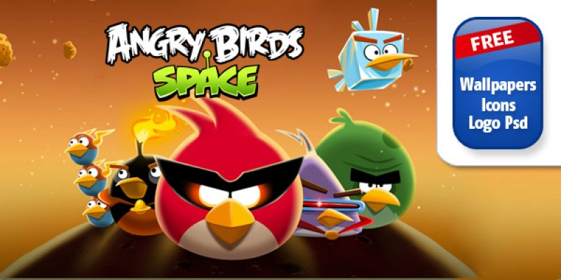 angry birds photography