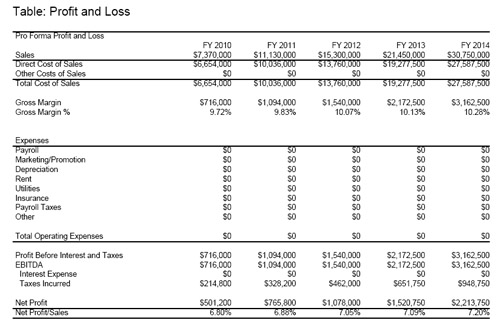 Putting Together Your Personal Profit and Loss Table \u2013 Fiscal Fizzle - profit and lost statement