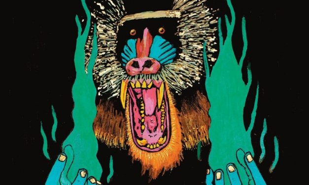 Hiatus Kaiyote – Choose Your Weapon – Meilleur album 2015