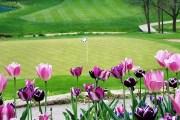 Spring Golf is around the corner