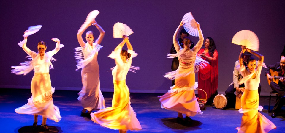 Flamenco Dance Classes