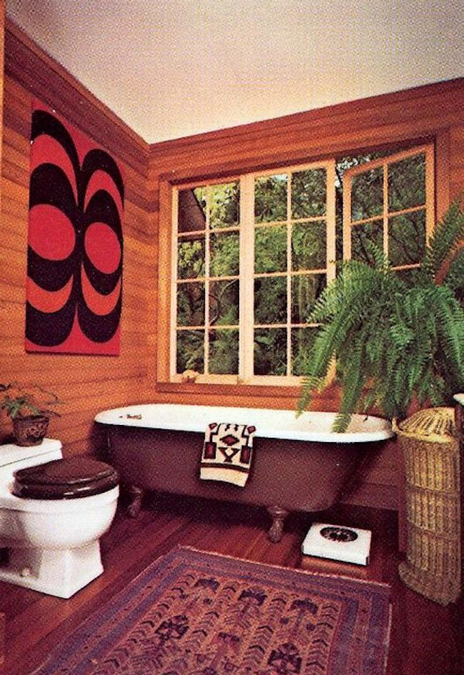 Dänisch Design Houseplants Of The 1970s (ferns And Tongues) - Flashbak