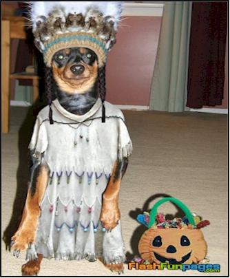 Dog Indian Costume