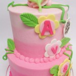 two tier simba jungle pink ombre cake