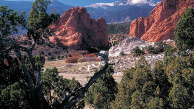 Fall In Central Park Wallpaper 13 Fun Free Things To Do In Colorado Springs Flavorverse
