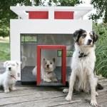 cubix-luxury-dog-home