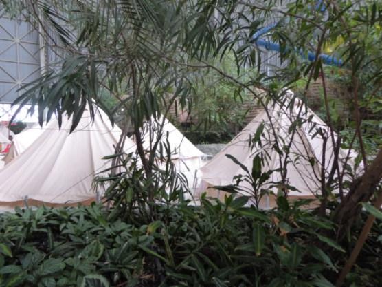 Regenwaldcamp
