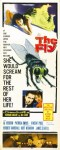fly-poster
