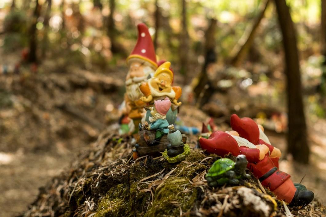 gnome (1 of 1)-15
