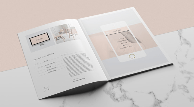 the best brochure design software