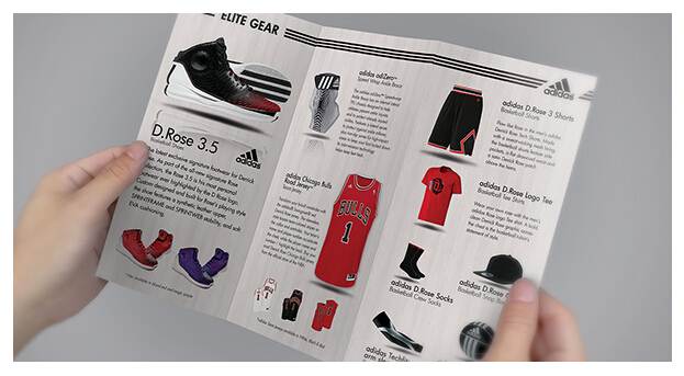 10 Best Sports Brochure Templates to Share _