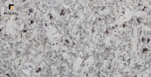 Moon White Granite Moon White Granite | Slabs | Tiles | Exporter