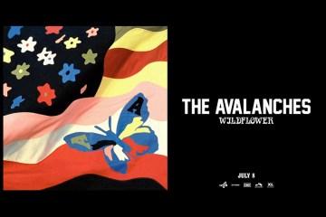 avalanches_main