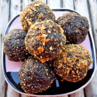 Hazelnut Cocoa Breakfast Truffles