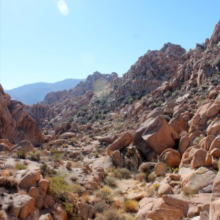 Palm Springs & Joshua Tree National Park & Temecula Recommendations