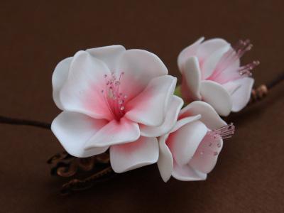Flor de Cerezo - Las flores más bellas del mundo