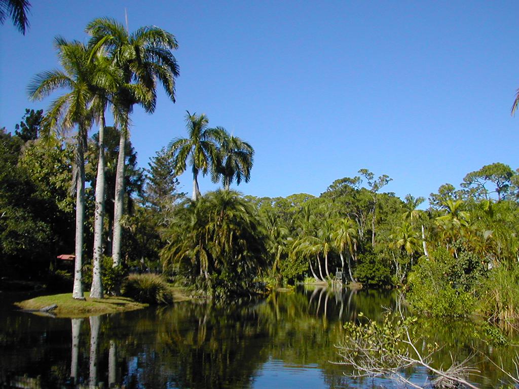 Gear Wallpaper Hd Naples Zoo At Caribbean Gardens Florida Hikes