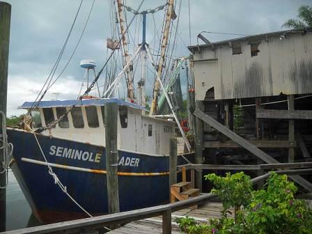 Punta gorda reborn and full of natural beauty historic for Punta gorda fishing