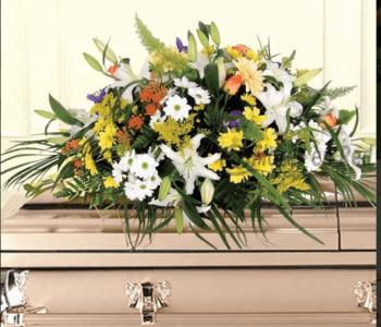 Centro funerario2