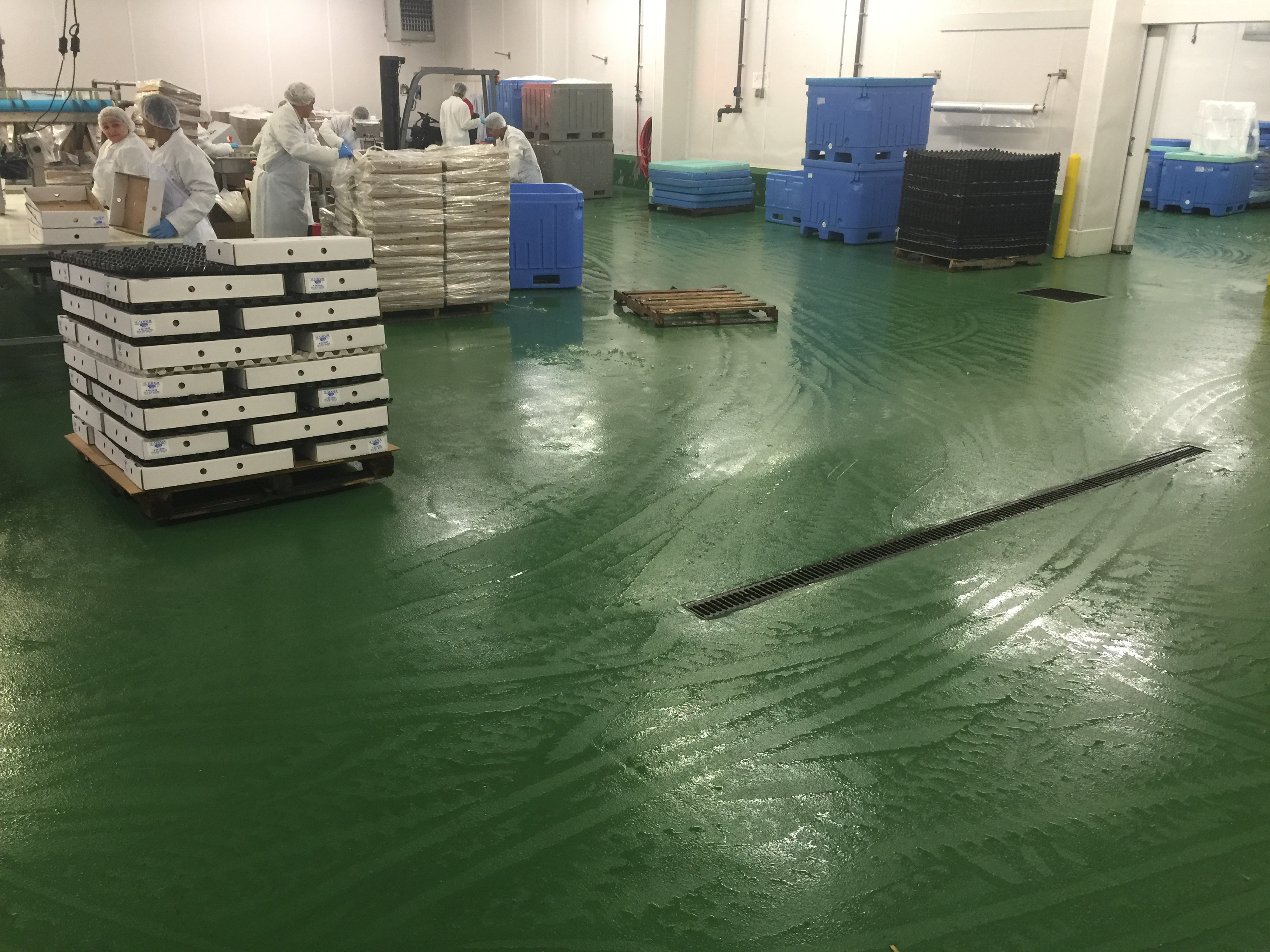 Pinturas Epoxicas Food Safe Epoxy Flooring: What You Need To Know