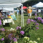 UT Student Market Promotes Organics