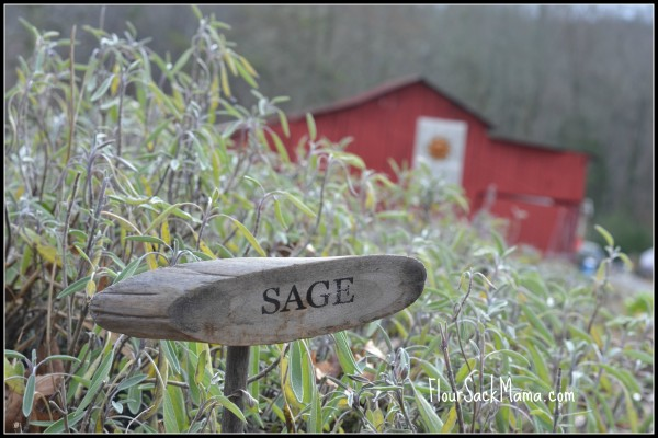 SageBarnErinsMeadowFlourSackMama