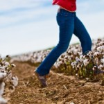 Organic Cotton Market has Growth Potential in USA
