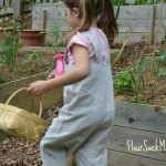 Five Good Reasons to Grow Your Own Organic Garden