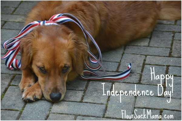 Dog Happy Independence Day