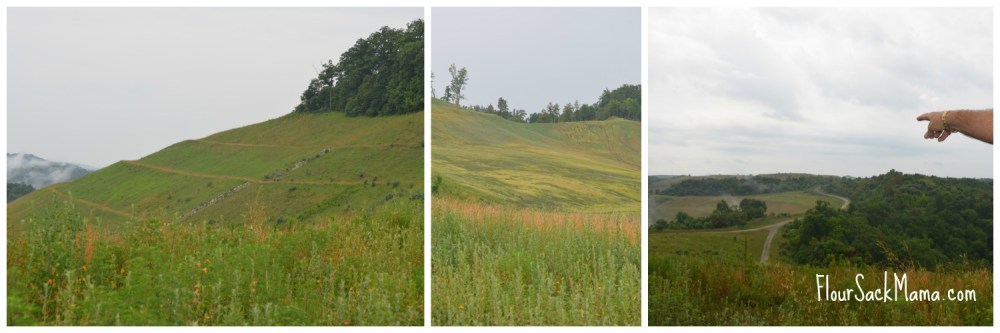 Stages of Green in Coalfields